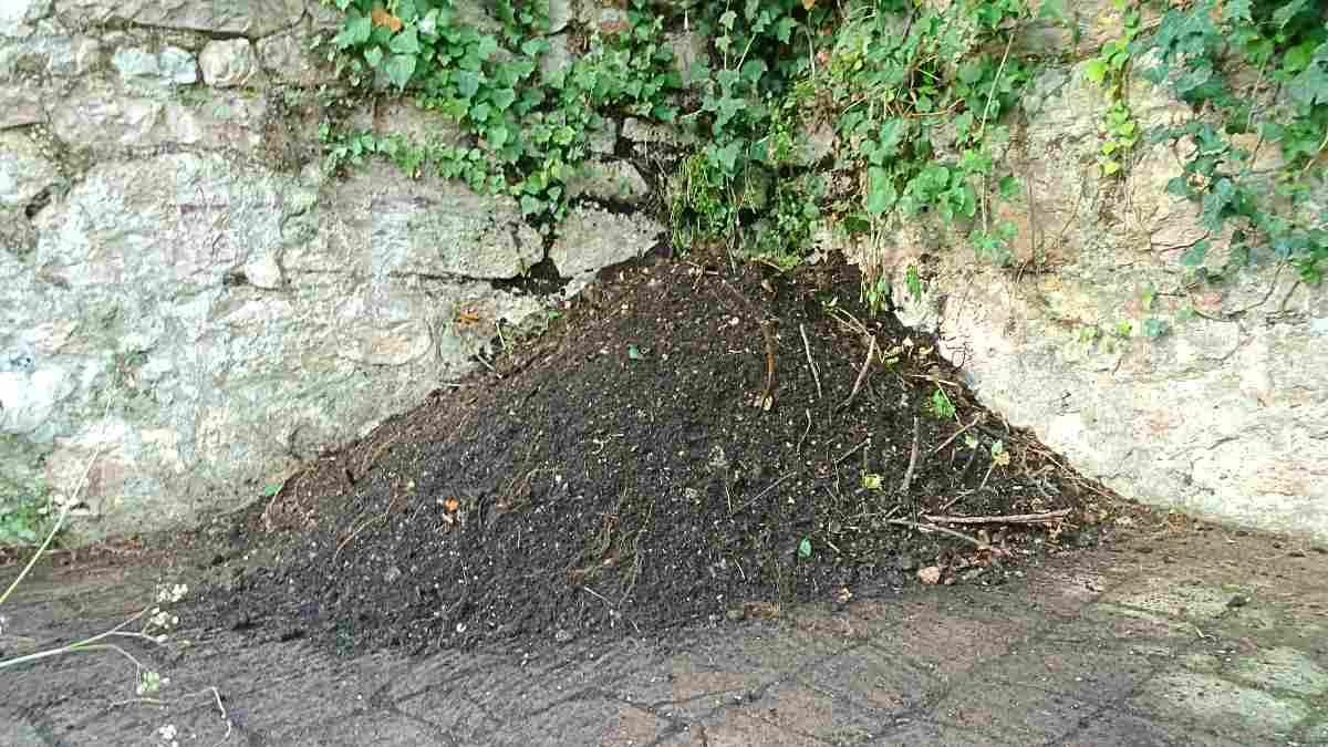 Compost, compostiera