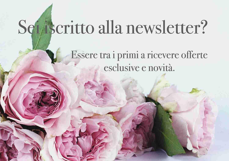Offerte, Newsletter
