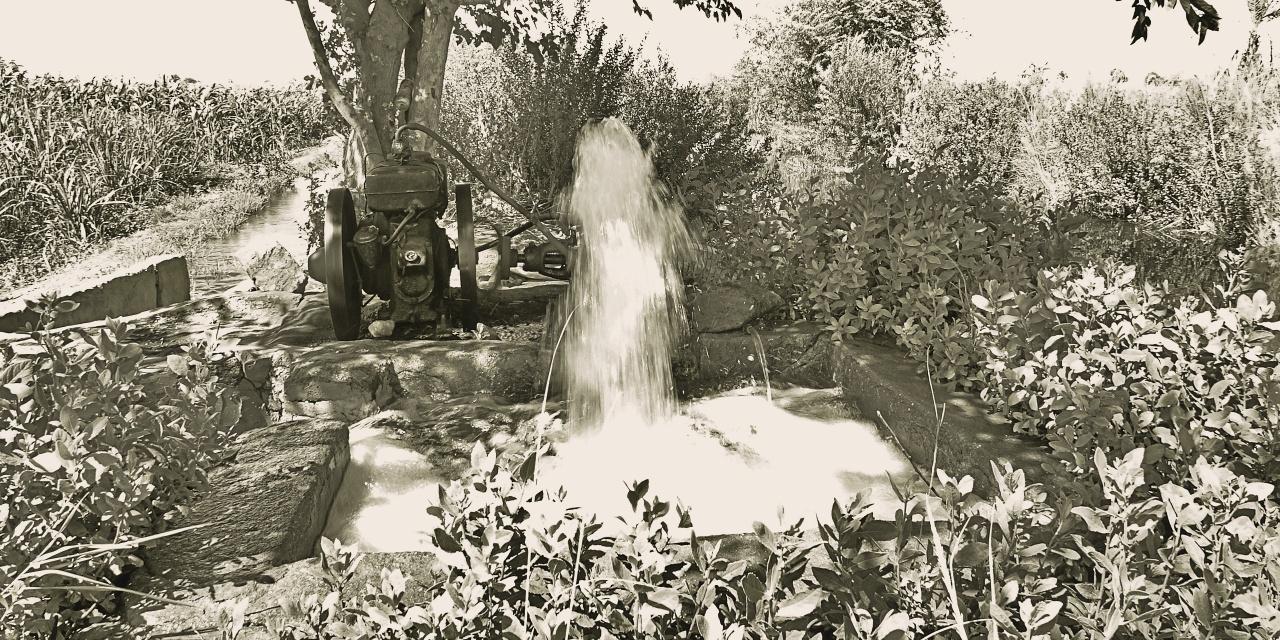 Irrigazione egiziano, Egitto, reportage, rivista online