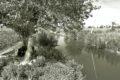 irrigazione egiziano, reportage, rivista online